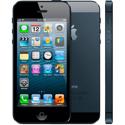 Imagem para categoria Capinhas iPhone 5s/SE