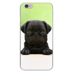 Imagem de Capa para Celular - Black Pug