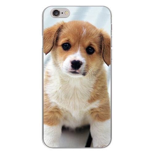 Imagem de Capa para Celular - Cachorrinho
