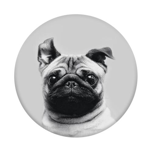 Imagem de Pop Socket - Pug